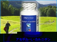 アセチルLカルニチン(アミノ酸) サプリメント