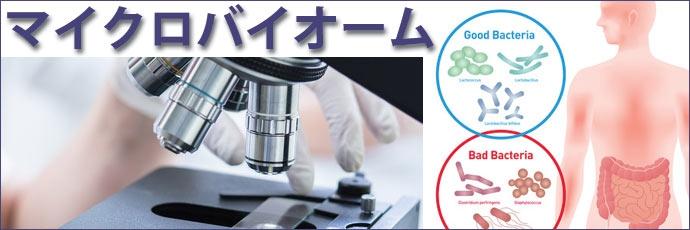 マイクロバイオームと腸内フローラ