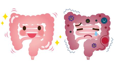 腸内環境と腸管漏れのリーキーガット
