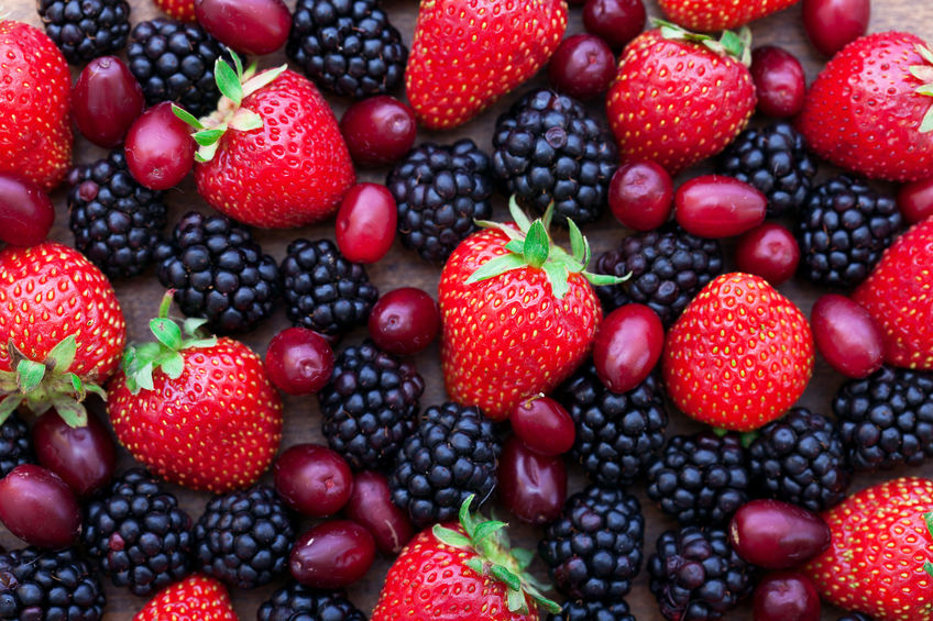 ポリフェノールと食事栄養素