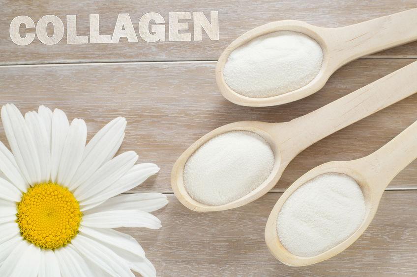 コラーゲン美容健康たんぱく質