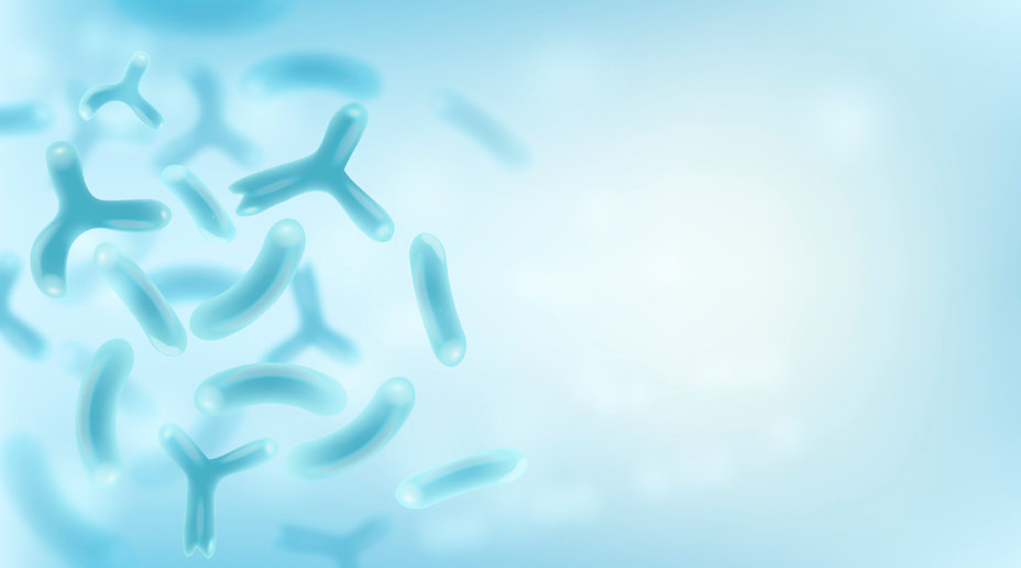 腸内菌と健康予防